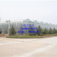 寿光市泰源农业科发展有限公司