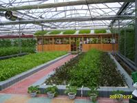 绿农温室大棚工程包头有限公司