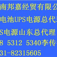 供应英威腾UPS电源蓄电池山东总代理临沂