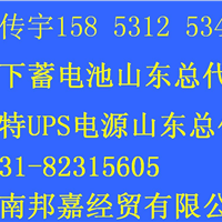 供应英威腾UPS电源蓄电池山东总代理济南