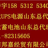 供应英威腾UPS电源蓄电池山东总代理聊城
