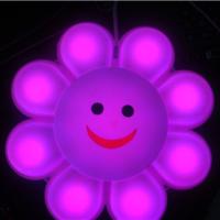 供应30CM太阳花灯-七彩变幻笑脸灯-街道两旁向日葵花灯