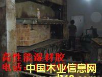 湿拼-高温蒸煮-木材干燥工艺用:高性能湿材胶