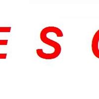 供应加拿大TESCO电机