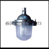 供应NFC9112 防眩泛光灯