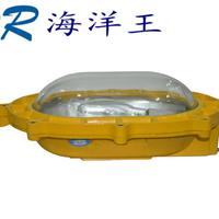 供应海洋王BFC8120(海洋王防爆灯)