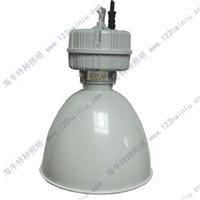 供应HN9798高顶灯壳体