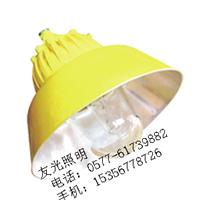 供应GBPC8700防爆平台灯