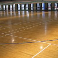 供应塑胶地板
