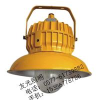 GBPC8710防爆平台灯