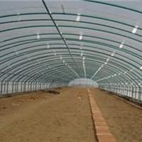 日光温室大棚建设特点