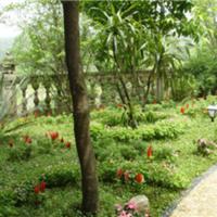 绵阳私家花园设计 绵阳别墅景观设计 成都莹光景观