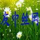 安平县友中丝网制品有限公司