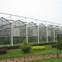 【智能温室建造】 智能温室建造价格 智能温室建设 金翰温室