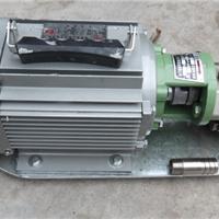 供应WCB-30P不锈钢手提式齿轮泵价格