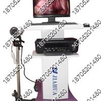 供应 阴道镜/电子数码阴道镜