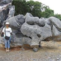 供应广东太湖石、太湖石产地批发、太湖石假山制作