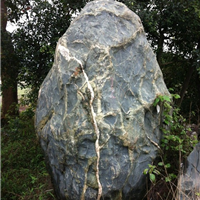 供应大型青石,大型景观石,大型园林石