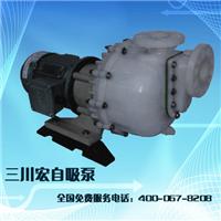 台湾污水提升泵 耐腐蚀自吸泵 耐酸碱自吸泵