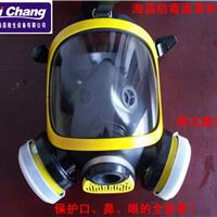 供应防毒面罩、防毒全面罩