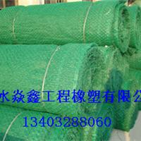 供应三维植被网植被网三维网垫防止水土流失网