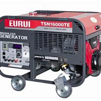 供应日本东洋汽油发电机TSN16000TE