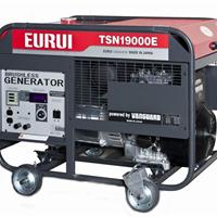 供应日本东洋汽油发电机TSN19000E