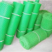供应塑料养殖网 塑料平网 宁夏塑料养殖网厂