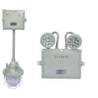供应中普防爆DCJ52系列防爆应急灯(B型)