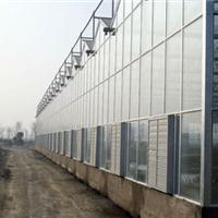 供应新能提供的温室大棚建设技术