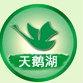 天津天鹅湖电子科技有限公司