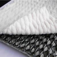 供应复合排水网,厂家专业生产