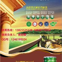 广东环保油漆涂料招商著名十大建筑涂料品牌