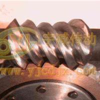供应TPU125平面二次包络蜗轮蜗杆副