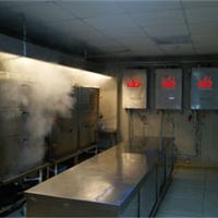 酒店专用海鲜节能蒸汽机 米饭蒸汽机