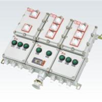 供应BXX51防爆配电箱(动力检修箱)