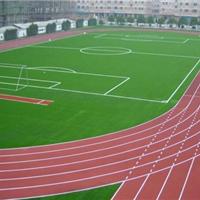 上海彩虹体育设施材料有限公司