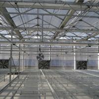 供应温室骨架