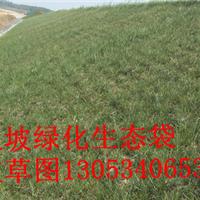 生态袋 上海生态袋
