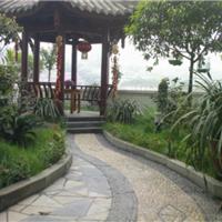 成都园林设计厂家 成都环境绿化设计服务 莹光景观