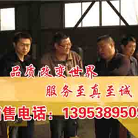 四川兴文可连续施工的金矿混凝土输送泵