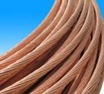 供应铜包钢接地绞线