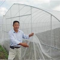 安平县森程防虫网厂