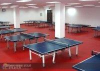 供应天津博格运动地板乒乓球运动地板