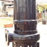 供应四川耐磨泥沙泵,水陆两用砂浆泵