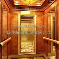 供应电梯装潢