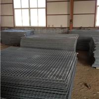 安平卓泰金属丝网制造有限公司