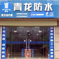 青龙化学建材(集团)有限公司