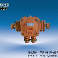 供应BHD2-25矿用低压电缆接线盒