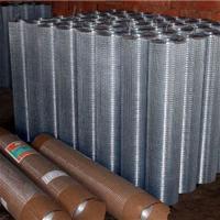 供应山东电焊网片、热镀锌电焊网片